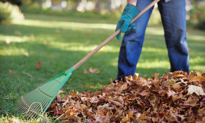 Green Healthy Landscaping - Brooklyn Park: $99 for Three Man Hours of Yard Cleaning Including Leaf Raking and Bush Trimming ($250 Value)