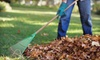 Green Healthy Landscaping: $99 for Three Man Hours of Yard Cleaning Including Leaf Raking and Bush Trimming ($250 Value)