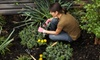 Southern Vistas Garden Center - Edisto Court: $12 for $25 Worth of Plants, Gardening Supplies, and More at Southern Vistas Garden Center