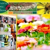 67% Off at Marvin's Organic Gardens
