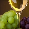 $10 for Wine at WineStyles in Shakopee