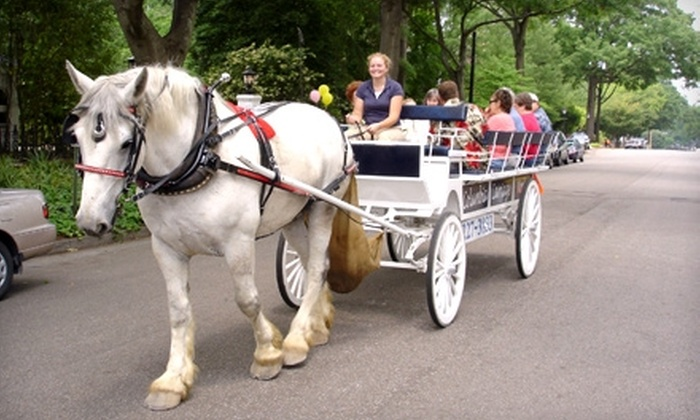 Columbia Carriage Works - Columbia: $10 for a 30-Minute Horse-Drawn-Carriage Ride for Two from Columbia Carriage Works ($20 Value)