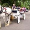 $10 for Carriage Ride for Two
