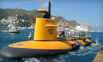 Catalina Adventure Tours: Good for a Boat Tour for Four People on the Sea View  - Catalina Adventure Tours in Avalon