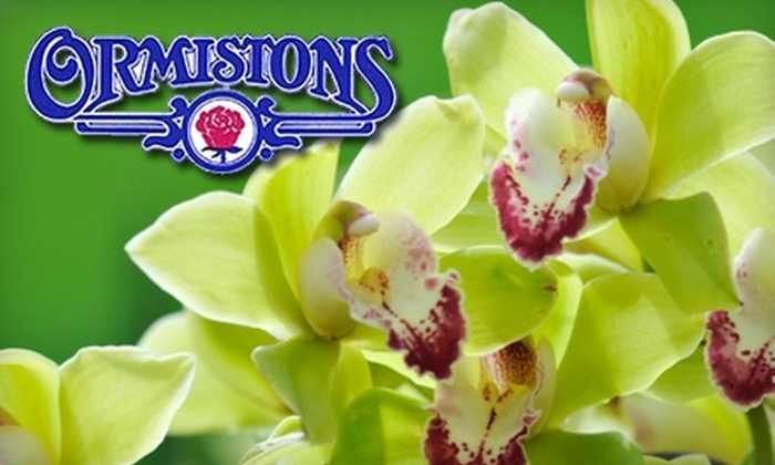 Ormistons - Mcmillan: $25 for $50 Worth of Flowers and Other Giftables at Ormistons