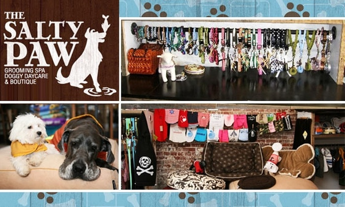 The Salty Paw - Financial District: 53% Off Pet Grooming, Toys & More at Downtown Pet Spa