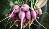 Farmhouse Delivery: $29 for Fresh Produce Delivery from Farmhouse Delivery (Up To $59 Value)