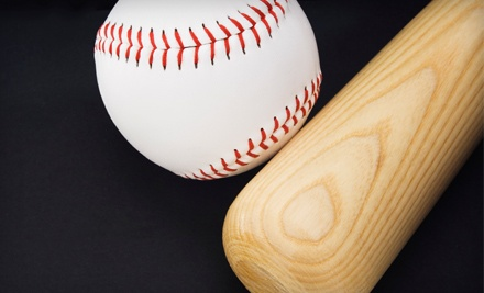 One 1-Hour Batting Session (a $59 value) - Coach Vic's Batting Cage and Baseball Academy in Hillsboro