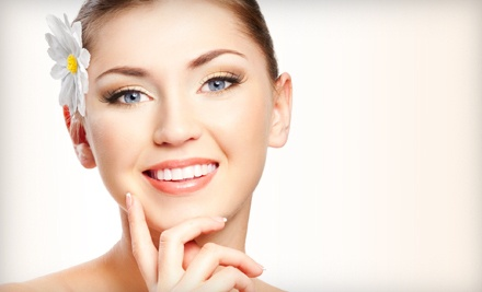 One Classical Facial or Skin-Renewal Peel (a $120 value) - The Geldner Center in Hinsdale