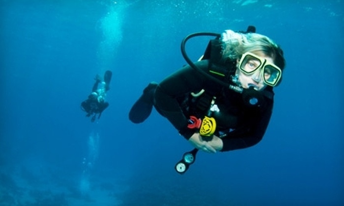Capt. Saam's Scuba School - Westchester County: $30 for One-Hour Discover Scuba Lesson at Capt. Saam's Scuba School in Stamford ($100 Value)