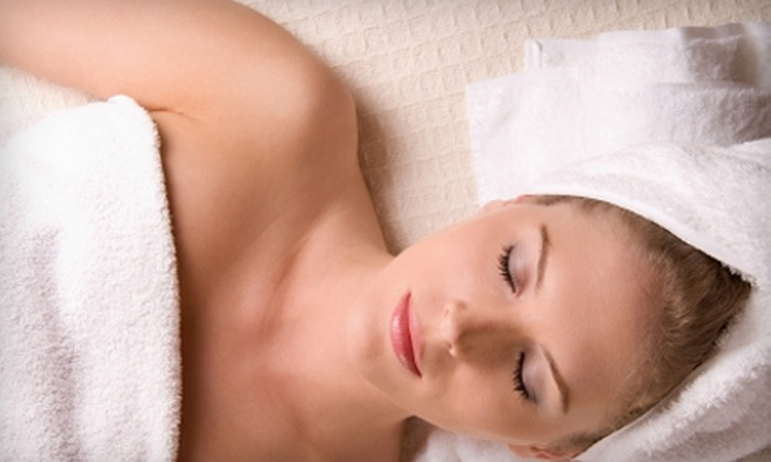 Plaza West Massage and Day Spa - West Plaza: $69 for a Bio-Electric Rejuvenation and Quantum Electro-Ionization Facial Treatment ($150 Value) at Plaza West Massage and Day Spa