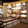 $3 Admission to Czech & Slovak Museum