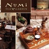 Half Off at Numi Tea Garden
