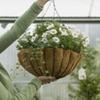 Half Off Hanging Flowerpots at Breezy Gardens