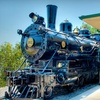 $10 Admission to Railroad Museum in Jackson
