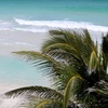 60% Off Day Trip to Key West from Davis Tours