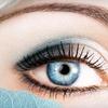 $10 for Eyebrow Wax at Petra's Euro Spa