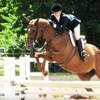 North Salem Horseback Riding Experience at 55% Off