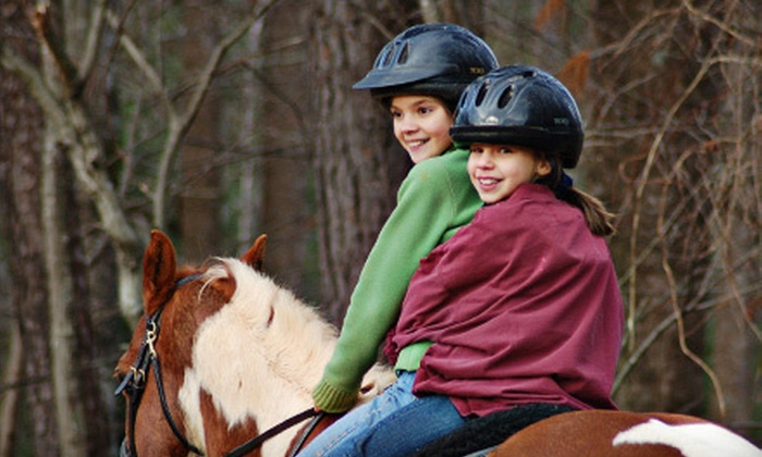 Iron Horse Farms - The Manor at Mill Creek: Two or Five 30-Minute Group Horseback-Riding Lessons at Iron Horse Farms in Canton (Up to 57% Off)