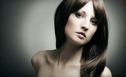 Haircut and Style (a $40 value) - It's All About Me Salon  in Tarpon Springs
