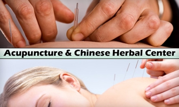 Wan-Mei Woo Acupuncture & Herbal Center - Elmhurst: $25 Acupuncture Session at Wan-Mei Woo's Acupuncture Center