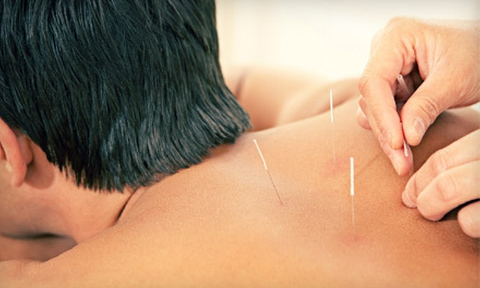 Acupuncture Health Associates - Downtown Westfield: Initial Consultation and One or Three 30-Minute Acupuncture Sessions at Acupuncture Health Associates (83% Off)
