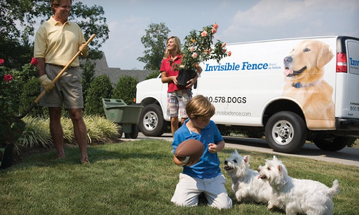 Invisible Fence of Greater Louisville - East Louisville: $599 for an Invisible Fence and Two Pet-Training Sessions from Invisible Fence of Greater Louisville ($1,324 Value)