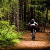 51% Off Tune-Up at Hammer City Cycle in Hamilton