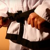 61% Off Martial-Arts Classes in Lincolnwood
