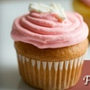 $6 for Gourmet Cupcakes and Pastries