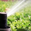 Up to 63% Off Sprinkler Inspection and Replacement