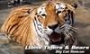 Half Off Lions Tigers & Bears Membership