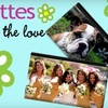 Bagettes: $19 for a Medium Personalized Bagettes Cosmetic Bag ($41 Value)
