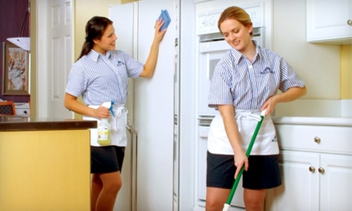 Molly Maid - Greenville: $35 for One Hour of Home Cleaning from Molly Maid (Up to a $90 Value).