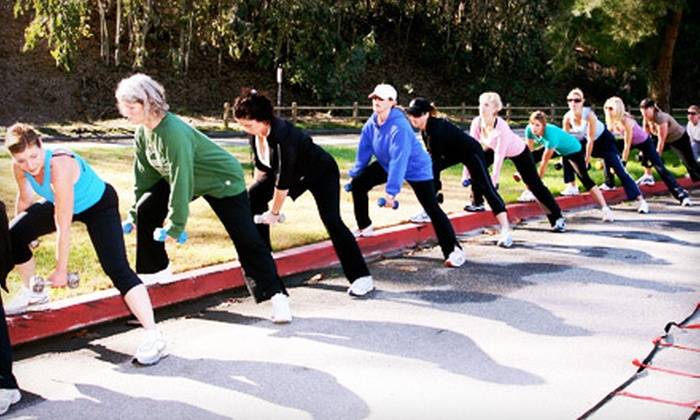 The Wellness Coach Boot Camp - Laguna Niguel: 10 or 20 Women's Boot-Camp Sessions and Nutritional Guidance from The Wellness Coach (Up to 81% Off)