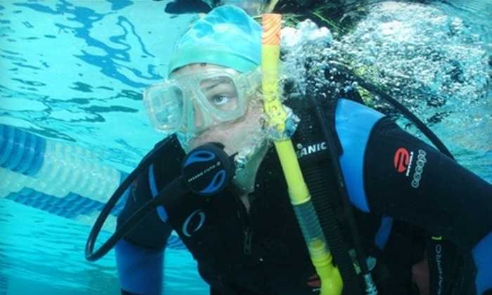 Dive N Trips - Pleasanton: $25 for an Introductory Scuba Class from Dive N Trips in Pleasanton ($50 Value)