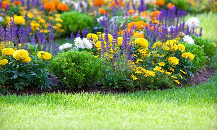 Garlatti Landscaping Inc. - Windsor: Lawn-Care Packages for Up to 5,000 or 10,000 Square Feet from Garlatti Landscaping Inc. (Up to 60% Off)