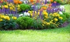 Garlatti Landscaping Inc.: Lawn-Care Packages for Up to 5,000 or 10,000 Square Feet from Garlatti Landscaping Inc. (Up to 60% Off)