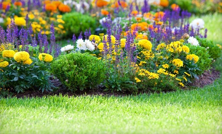 1-Hour Lawn Care Package for up to 5000 sq. ft. (a $150 value) - Garlatti Landscaping Inc. in
