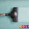 51% Off Carpet Cleaning from Color Tile