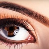 Up to 55% Off Brow and Lash Services in Joliet