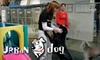 Urban Dog - West Los Angeles: $37 for Three Days of Playcare ($111 Value) or $49 for Two Nights Boarding ($98 Value) at Urban Dog