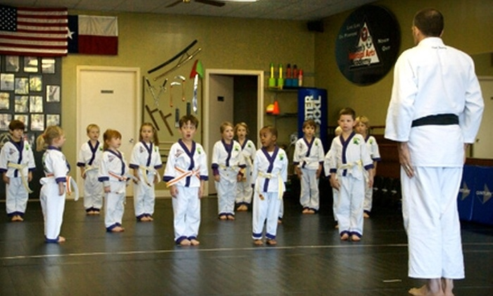 Haben's Martial Arts Academy - Bulverde: $90 for 12 Classes and Uniform at Haben's Martial Arts Academy in Spring Branch ($190 Value)
