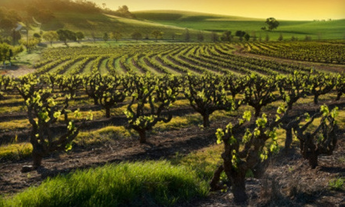 Comfort Inn, Calistoga  - Calistoga: $130 for a One-Night Winter Wine-Country Retreat with Winery Passes for Two at Comfort Inn, Calistoga ($259 Value)