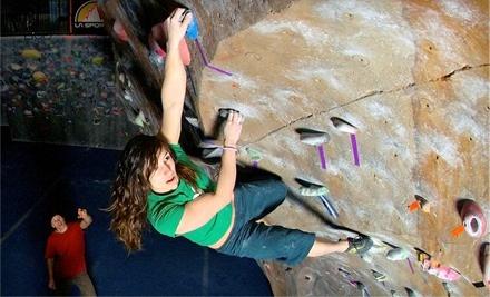 The Spot Bouldering Gym - The Spot Bouldering Gym in Boulder