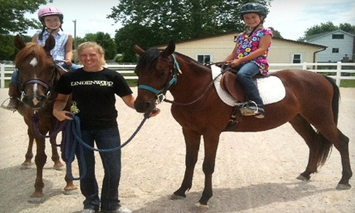 Johnson Horse Solutions - High Ridge: $40 for Two Private Horseback-Riding Lessons at Johnson Horse Solutions in High Ridge ($80 Value)