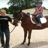 Half Off Horseback-Riding Lessons in High Ridge