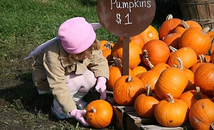 2 Fall-Festivities Admissions (a $16 value) - Kelsay Farms in Whiteland