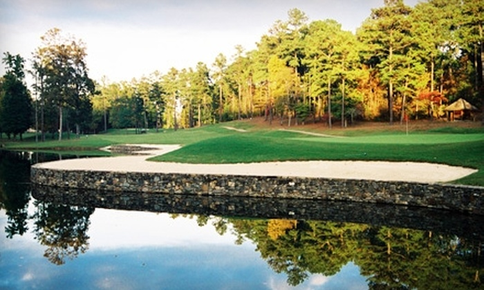 Eagle Point Golf Club - Alabaster-Helena: $35 for One-Hour Golf Lesson at Eagle Point Golf Club