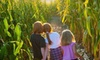 Up to 57% Off Fall Festival Admissions in Canton